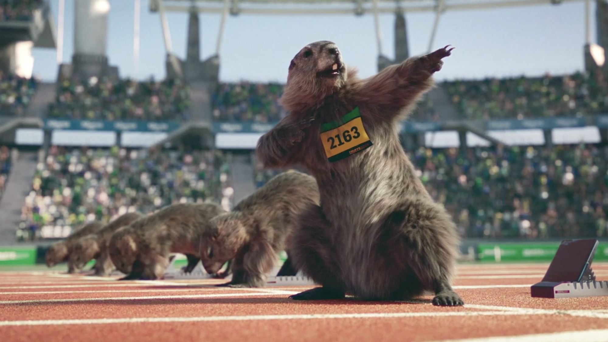 A computer generated marmot posing on the running track before a race